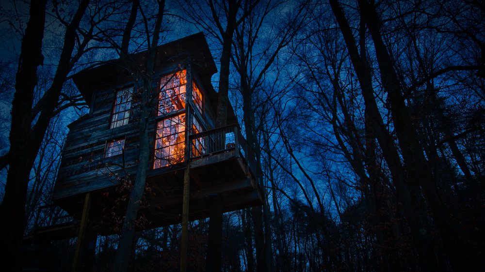 Treehouse Project-11.jpg