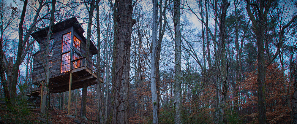 Treehouse Project-15.jpg