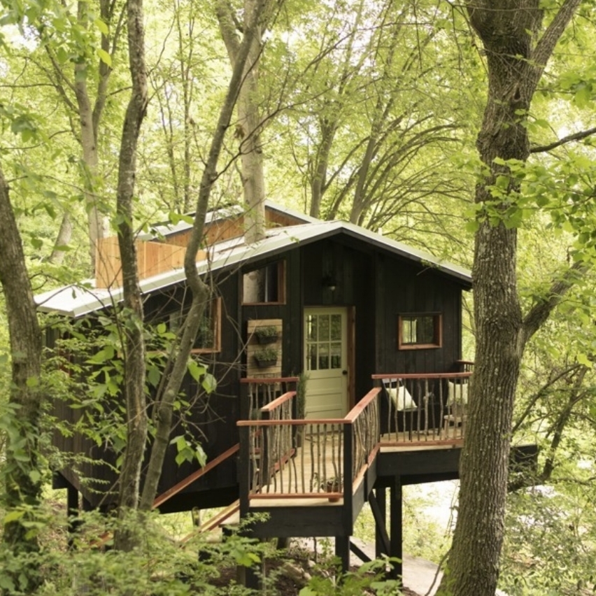 Elements Treehouse.jpg