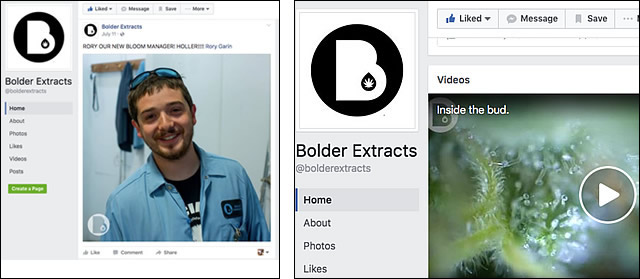 Bolder on Facebook