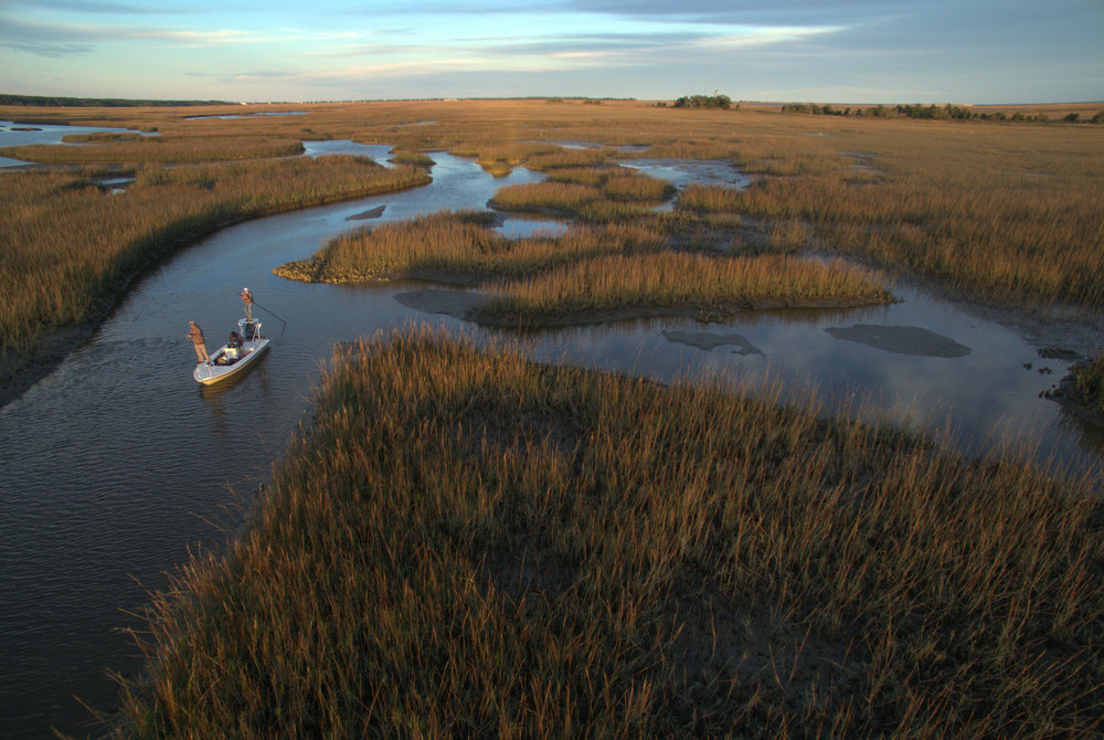 Marsh 3 Cropped.jpg