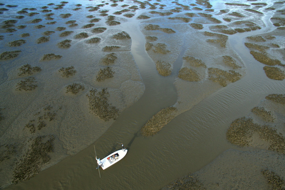 Marsh 1 Cropped.jpg