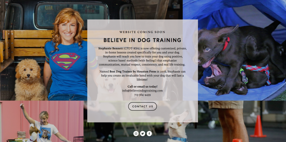 believe in dog houston_A brand strategy Consulting_Stephanie Bennett