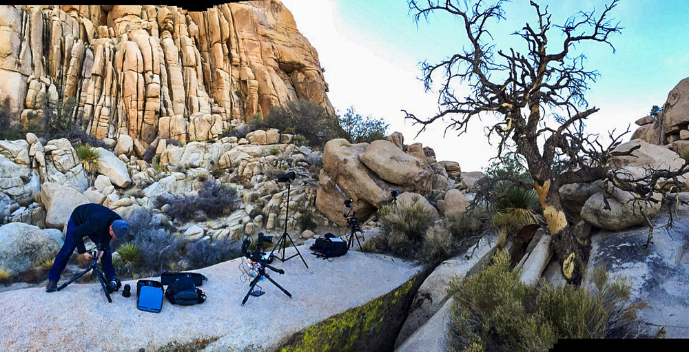 Setting up for a nighttime timelapse of an ancient Pinyon Pine tree in the park. We use lights to add highlights to the scene.