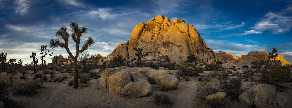 Joshua Tree Photography Workshops