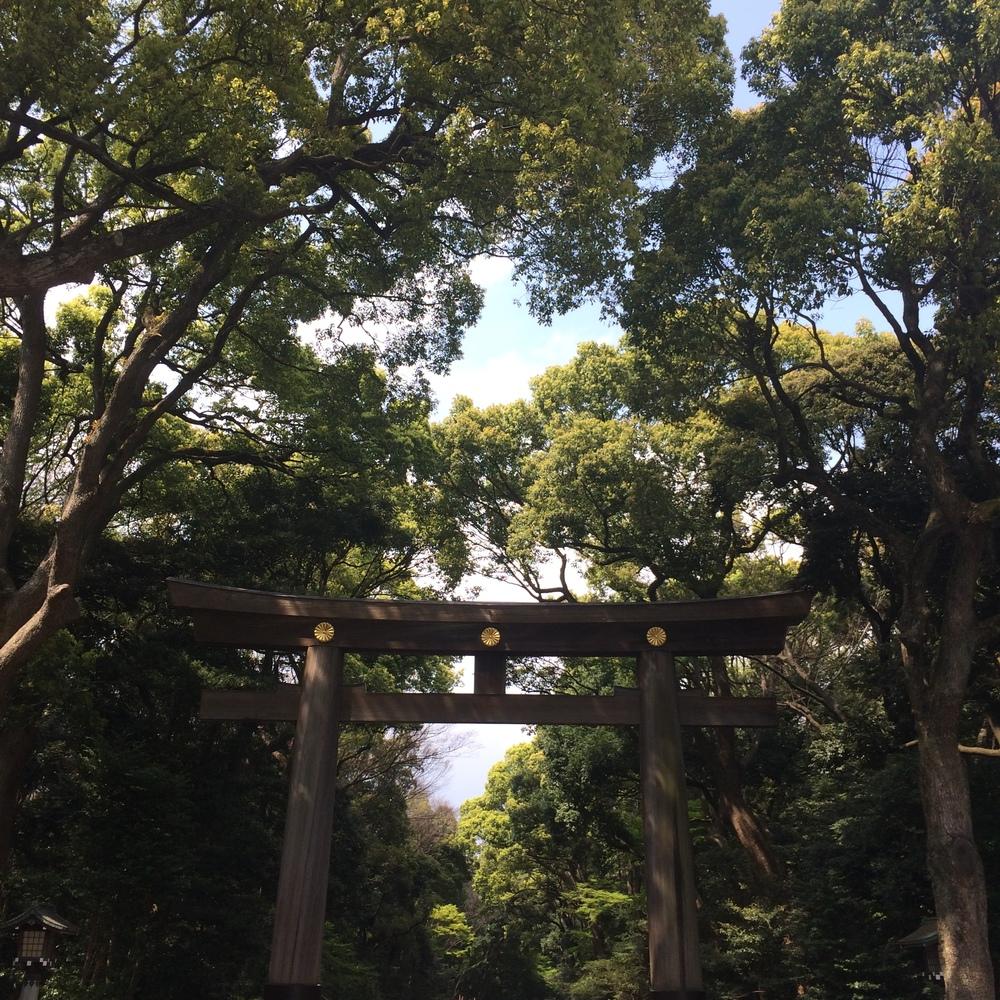 Meiji Shrine, Tokyo