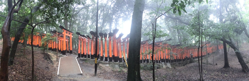 Thousands of Torii