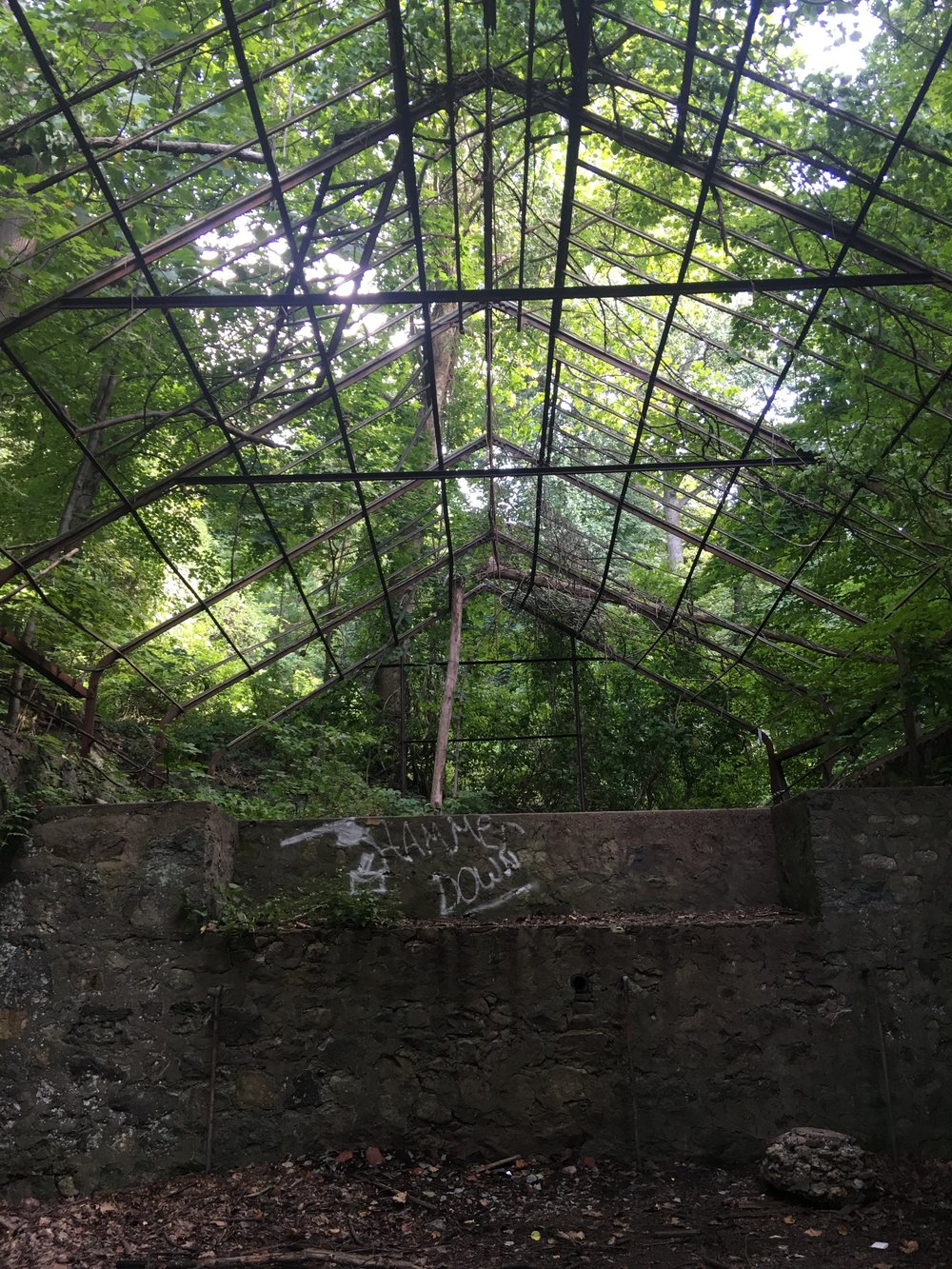 I imagined a roof made of glass, letting in light for gardens that once grew here.
