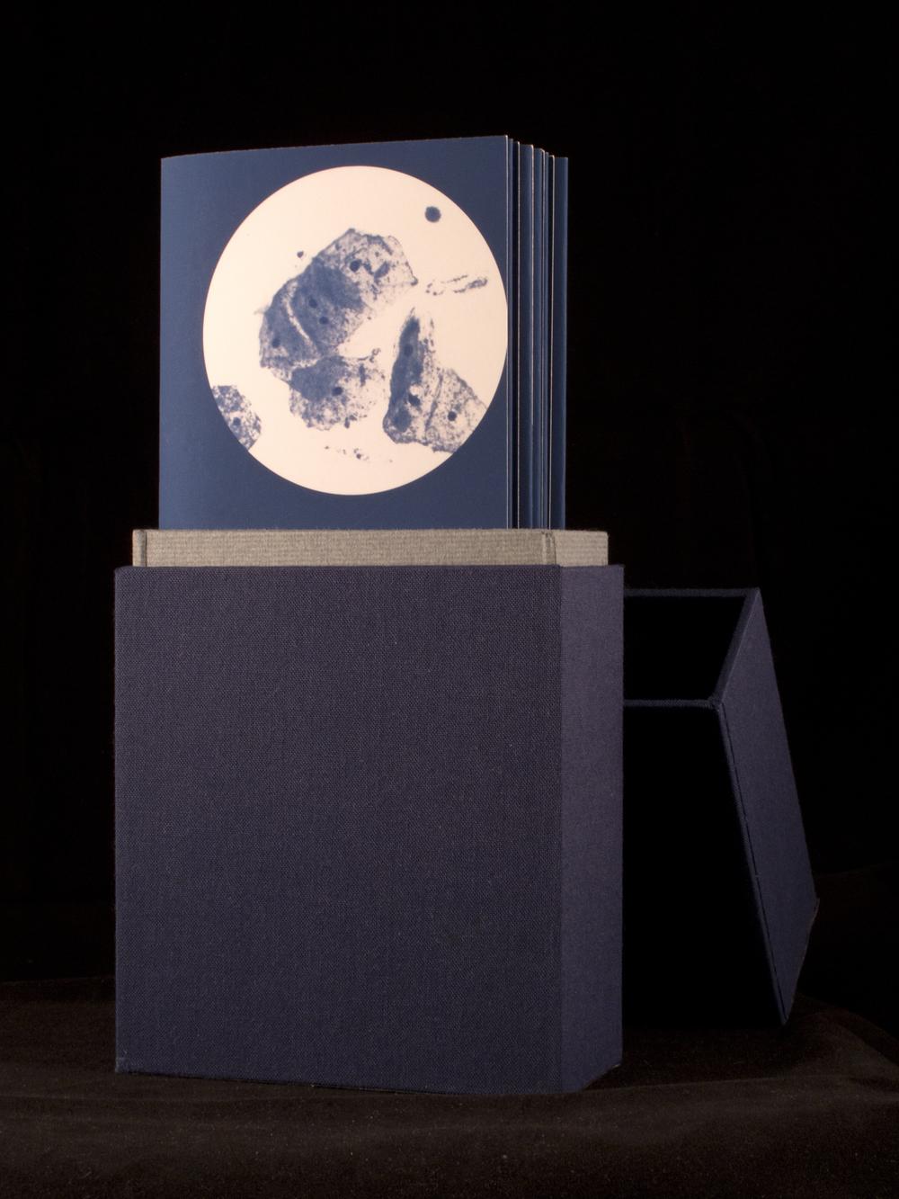 Artist Book (Trichinosis)