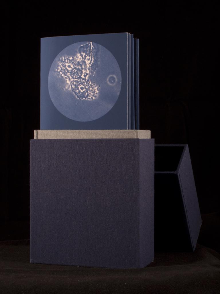 Artist Book (BV)