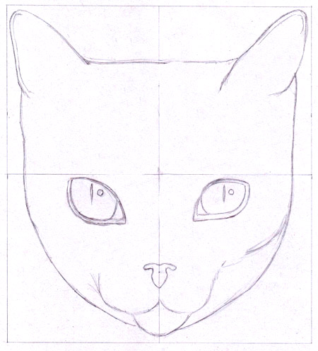 How To Draw A Cat Learn How To Create A Unique Colorful Cat Drawing