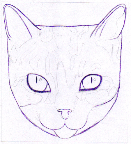 Outlining the cat with violet