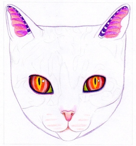 Coloring the cat's ears