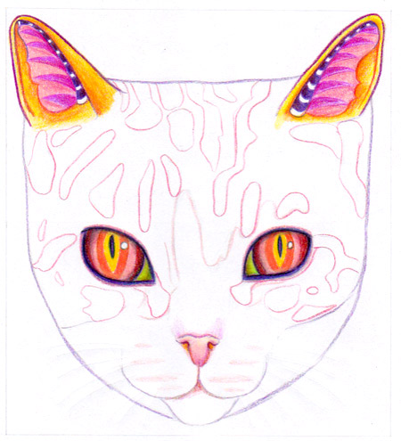 Drawing the designs on the cat