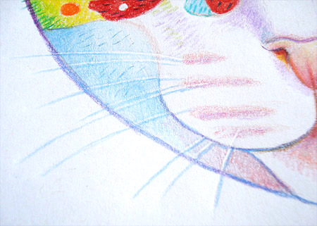Drawing cat whiskers close-up