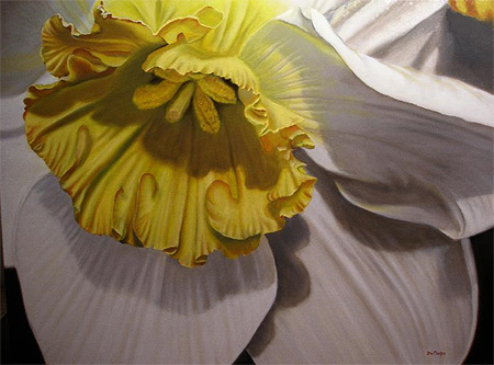 """Buttercup Upclose, 30"""" x 40"""", Oil on Canvas by Delmus Phelps"""