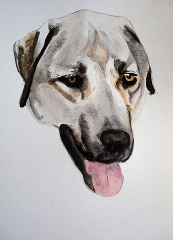 Dog Artwork in Progress by Thaneeya