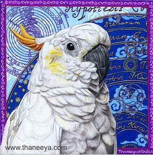 Image of: Simple Bird Drawings Art Is Fun Bird Drawings Gallery Of Colorful And Delightful Bird Art Art