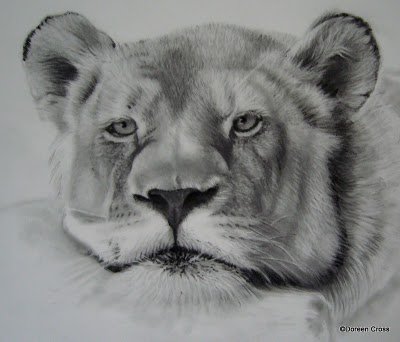 The lioness' face is finished