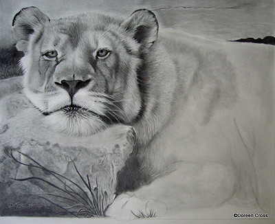 Work done on the background, and more definition is added to the lioness' body