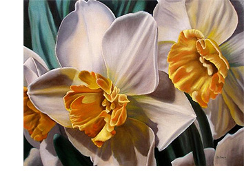 Daffodil Flower Art