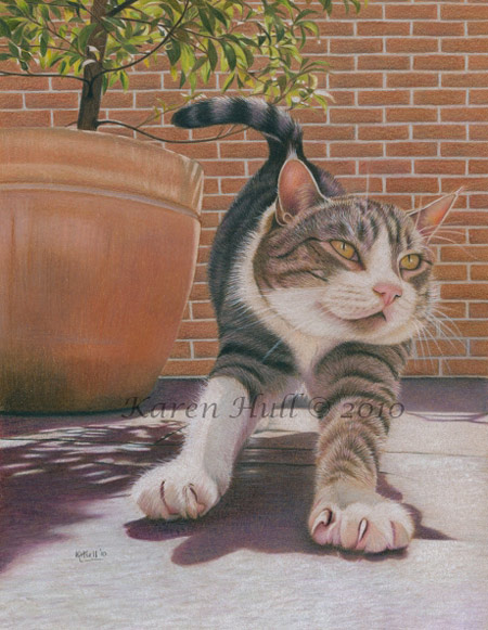 Cute Cat Drawing by Karen Hull