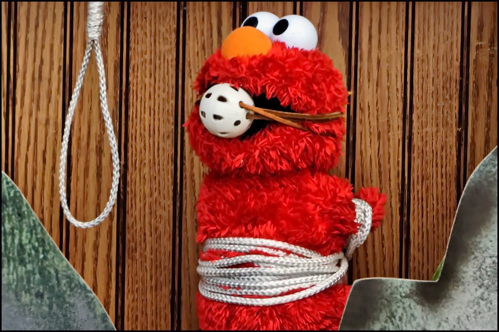 Gag Me Elmo by Mark Turnauckas