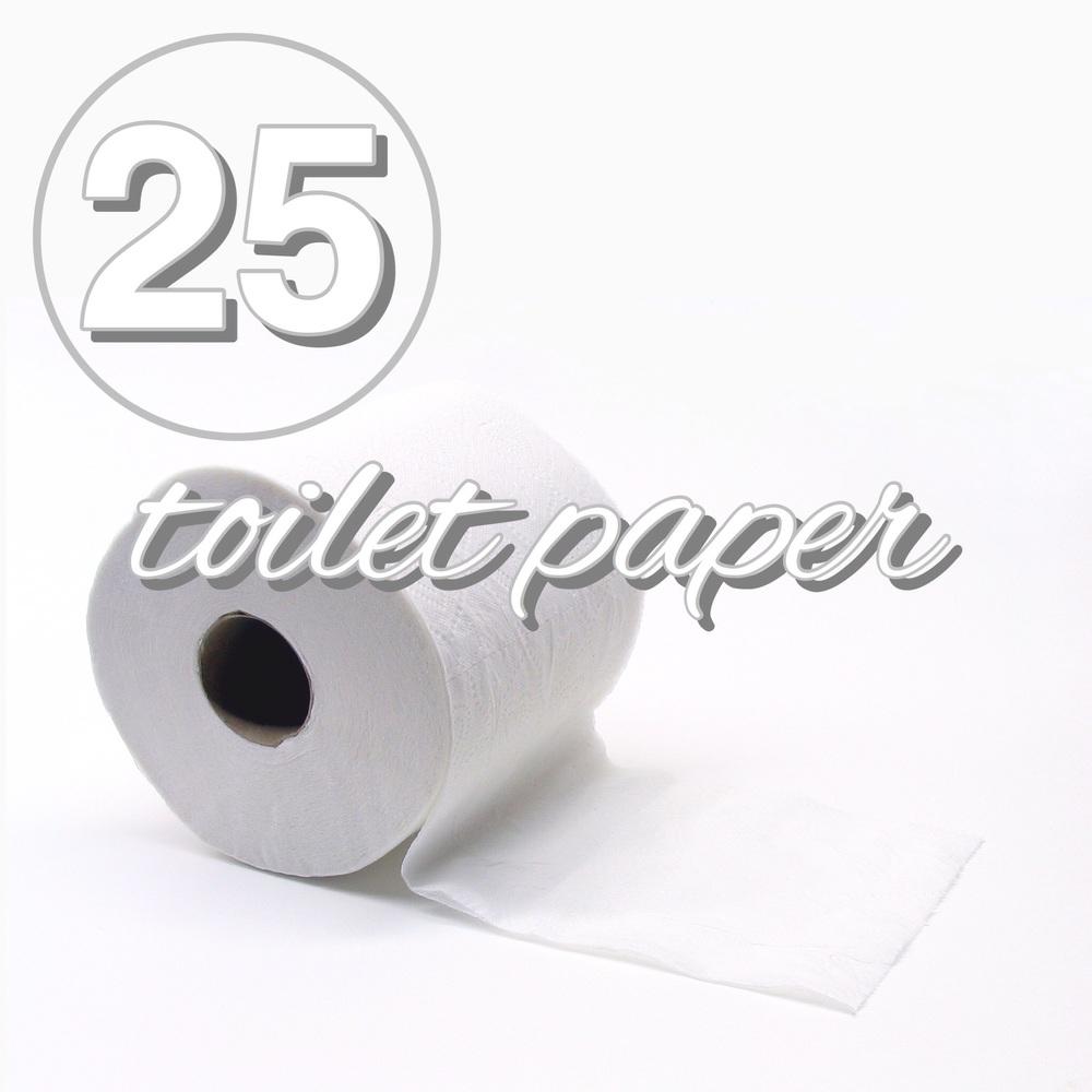 Going zero waste zero waste challenge day 25 toilet paper for Toilet paper roll challenge