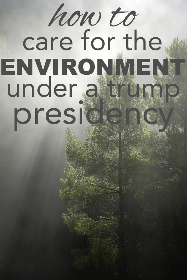 how to take personal action and care for the environment under a trump presidency.
