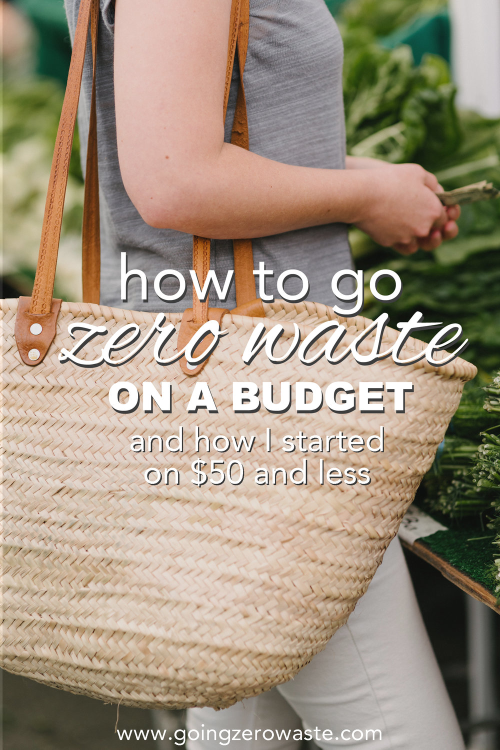 How to go zero waste on a budget with fifty dollars or less from www.goingzerowaste.com #zerowaste