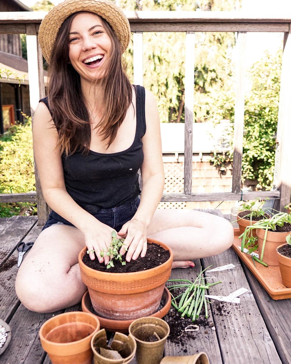 How to Grow an Edible Windowsill Garden from www.goingzerowaste.com