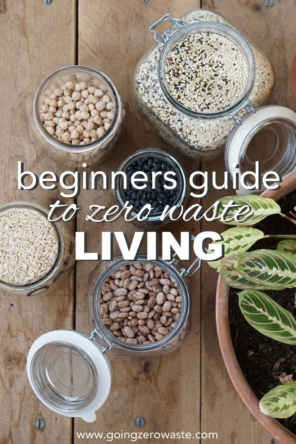 Beginners guide to zero waste living from www.goingzerowaste.com  #zerowaste #ecofriendly #gogreen #simpleliving