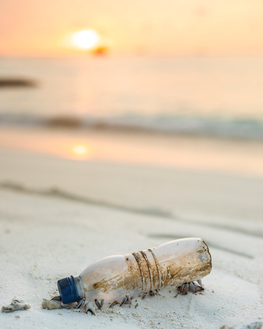 Microplastics: what are they and what can we do about them from www.goingzerowaste.com #microplastics #plastic #zerowaste