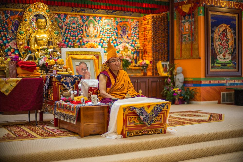 Arjia Rinpoche-6.jpg