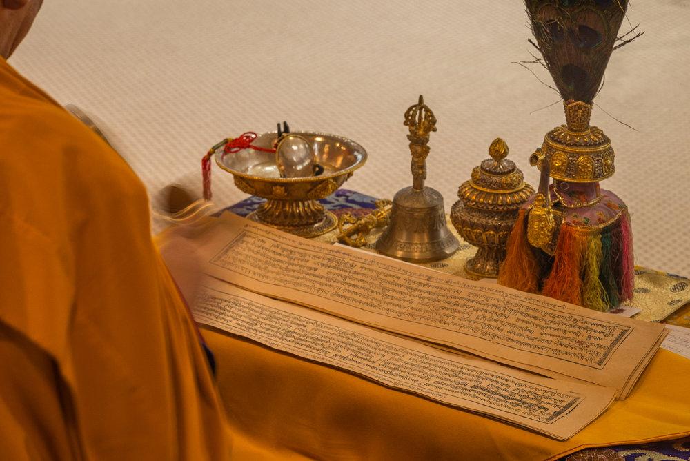 Arjia Rinpoche-7.jpg