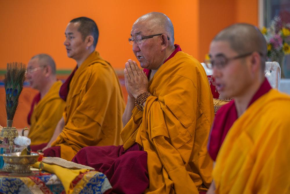 Arjia Rinpoche-13.jpg