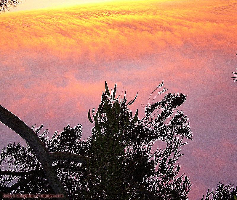 Ocean_of_Clouds_by_kwsapphire.jpg