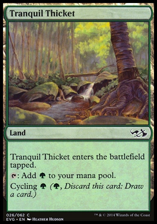 Tranquil Thicket.jpg