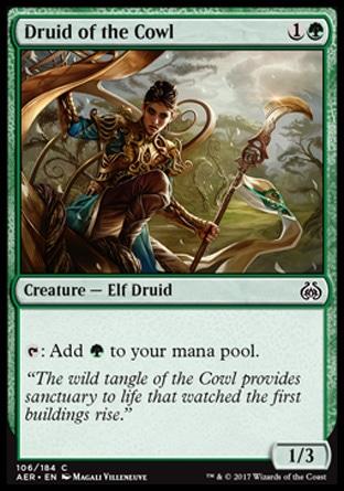 Druid of the Cowl.jpg