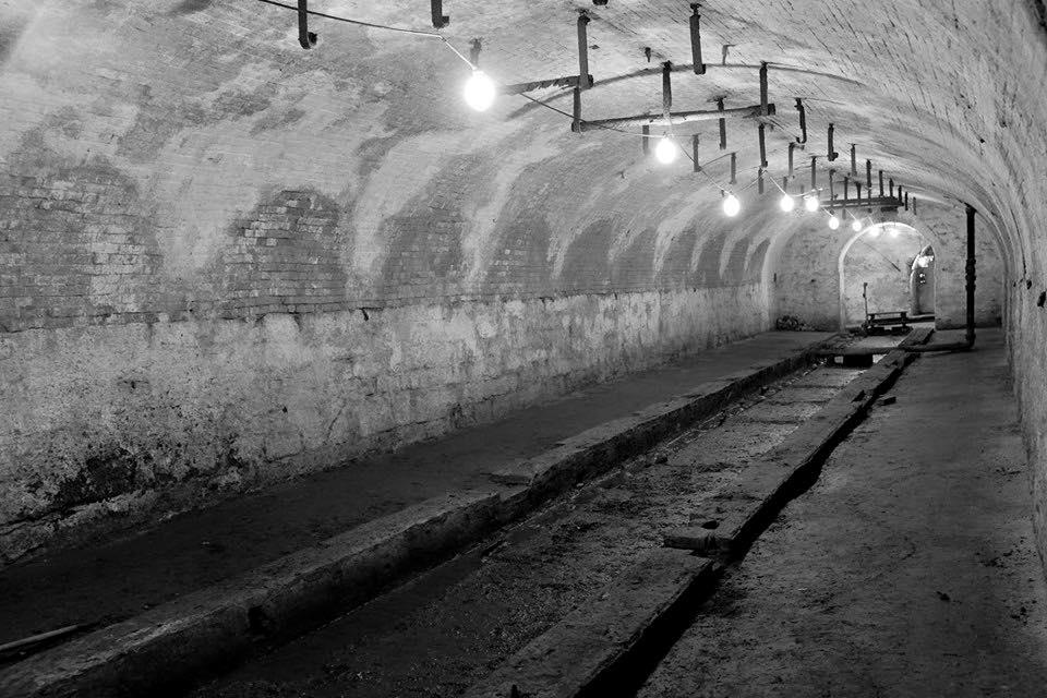Tunnels Spring.jpg