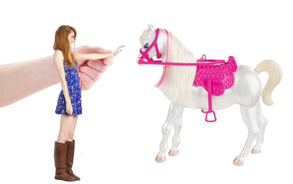 barbiehorse2 copy.jpg