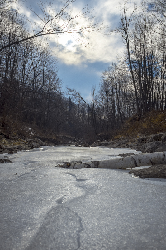 20160124-_DSF9330 Taylor Creek.jpg
