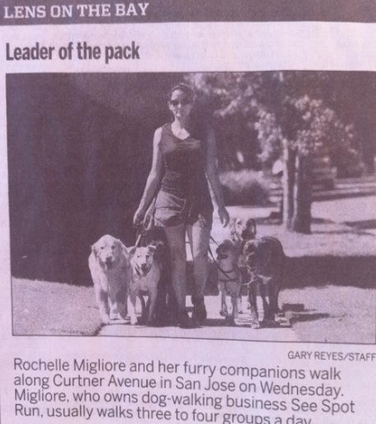 we made it into the paper again! Woof!