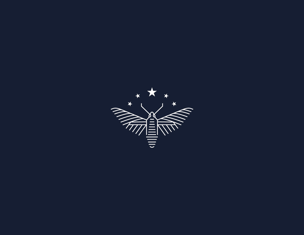 FCDorsum_branding-24.jpg