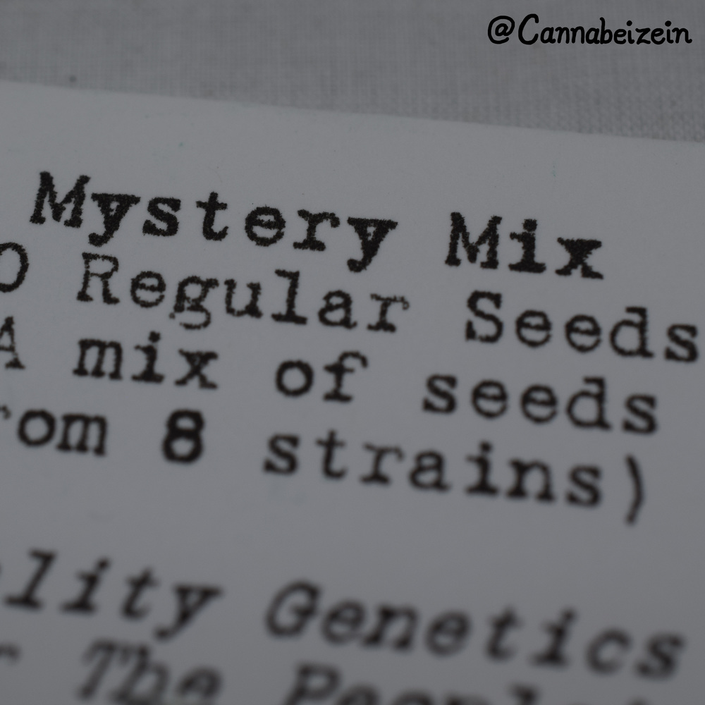 Cannabeizein 0087 - Mystery Mix - DSC_1073 copy.jpg