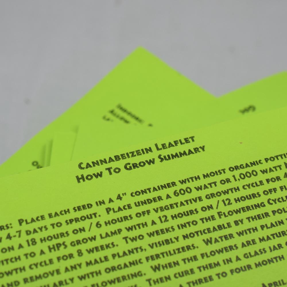Cannabeizein 0186 - Leaflet - DSC_0061.jpg