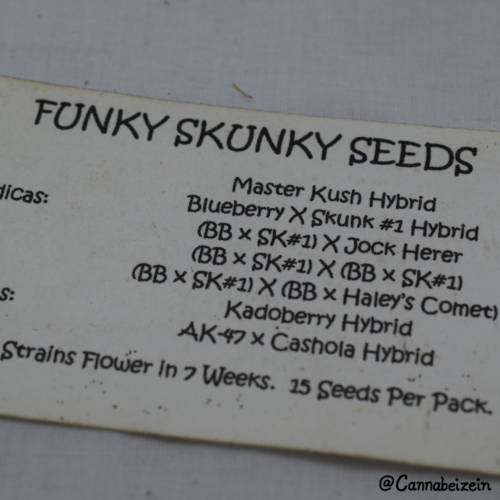 Cannabeizein 0211 - Funky Skunky Seeds - DSC_0779 copy.jpg