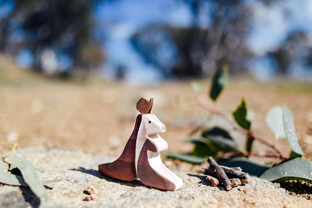 Little Joey Canberra Australia-347.jpg