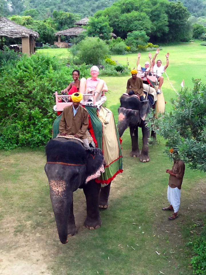 Elephant-back Ride