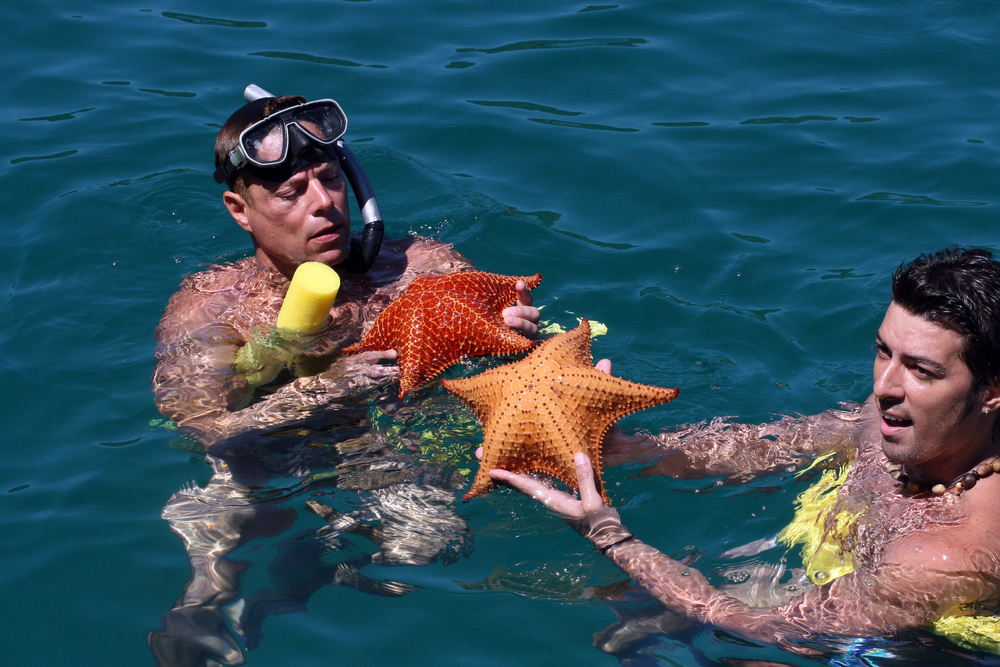 Hot men starfish